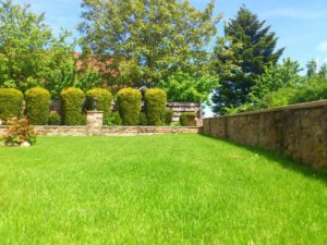 backyard landscaping in champlin