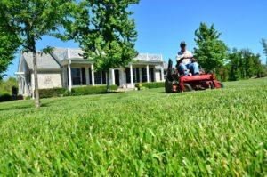 lawn mowing in Champlin, MN