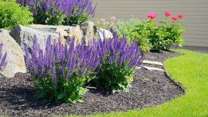 shrubs mulch boulder wall