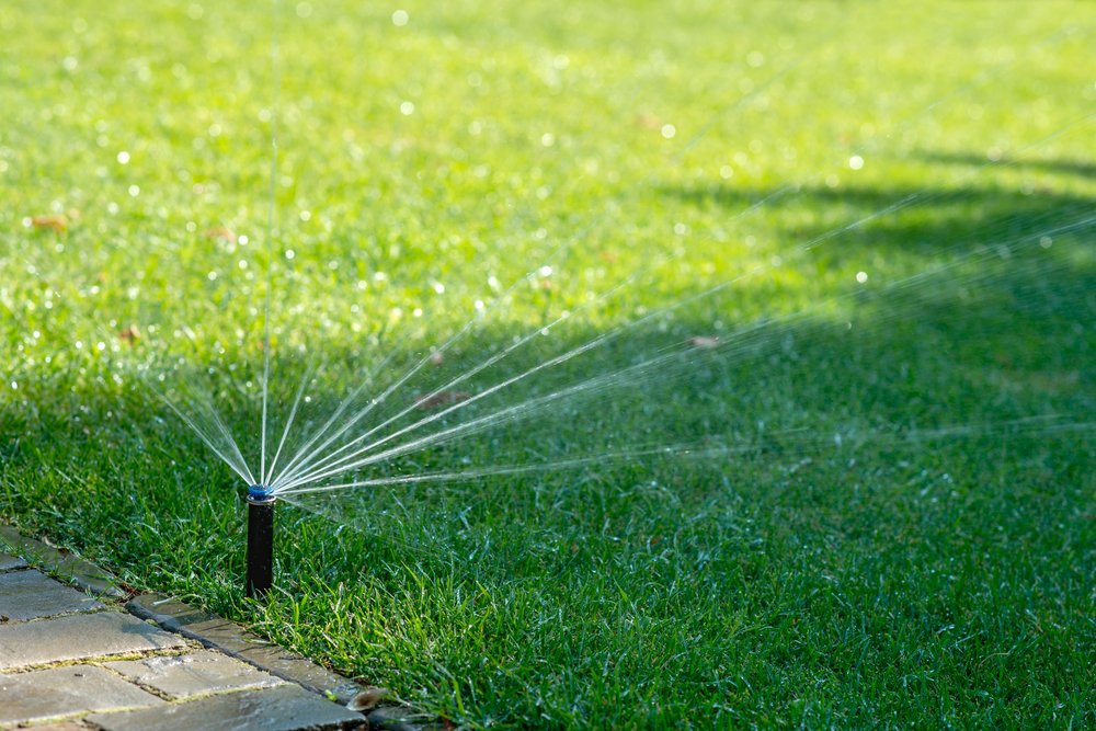 winterizing sprinklers champlin mn
